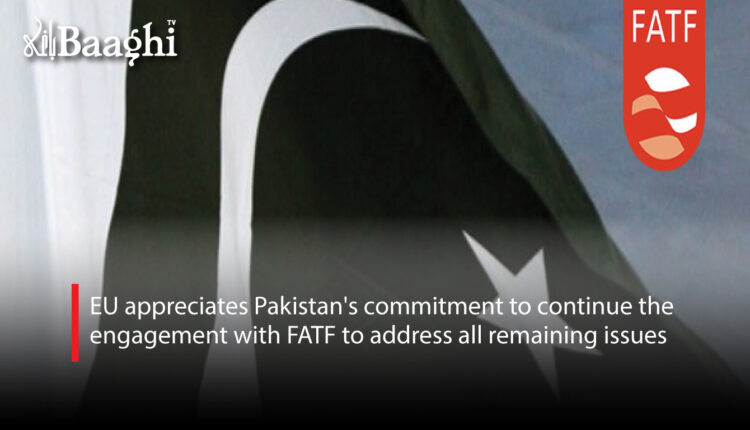EU appreciates Pakistan's commitment to continue the engagement with FATF to address all remaining issues #Baaghi