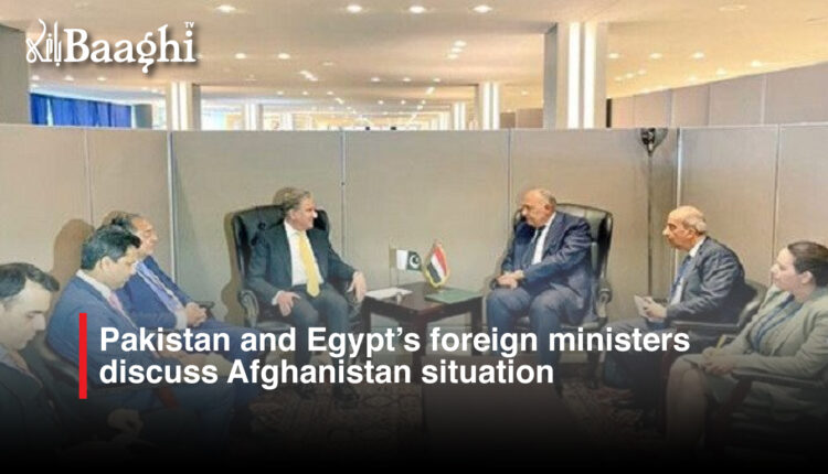 Pakistan-and-Egypt's-foreign-ministers-discuss-Afghanistan-situation #Baaghi